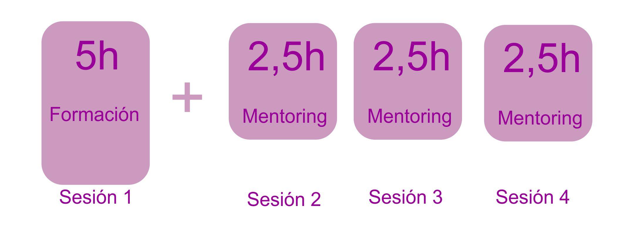 1 sesión formación+ 3 mentorización